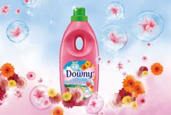 Downy Garden Bloom