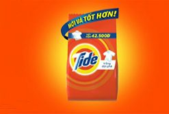 Tide Regular