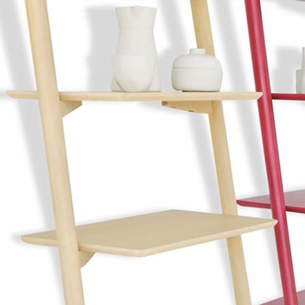 can shelf organizer