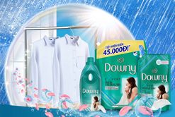 Downy Expert Indoor