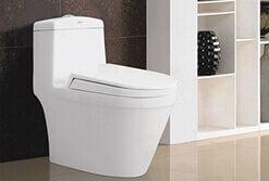 vietnam-american-standard-toilets