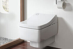 vietnam-toto-toilets