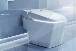 vietnam-viglacera-toilets